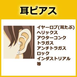 耳ピアスイヤーロブ(耳たぶ)-ヘリックス-アウターコンク-トラガス-アンチトラガス-ロック-インダストリアル--等
